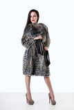 Young woman in fur coat from raccoon standing on white background Stock Photography