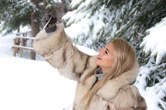 The young woman in a fur coat stands in the snow-covered park Sh Stock Image