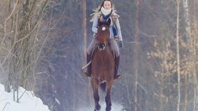Free Young Woman Galloping On Snowly Outdoor On Red Horse - Telephoto Shot Stock Image - 114586581