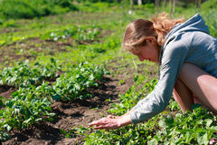 A young woman in the garden Stock Images