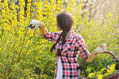 Young woman in a garden full of yellow flowers Royalty Free Stock Images