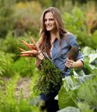 Young woman gardener holding a sheaf of carrots and a hoe Royalty Free Stock Photography