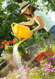 Young woman gardener working with flowers Stock Image
