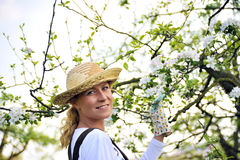 Young woman gardening Royalty Free Stock Photo