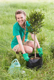 Young woman gardening for the community. On a sunny day Stock Photography