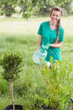 Young woman gardening for the community Royalty Free Stock Images