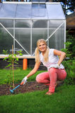 Young woman gardening in her yard with rakes. Outdoor. view on greenhouse Stock Image