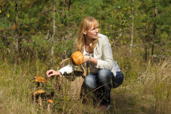 Young woman gathering mushrooms in the forest Stock Photos