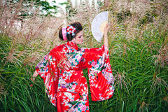Young woman in geisha costume Royalty Free Stock Photography