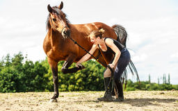 Young woman girl taking care of horse. Stock Image