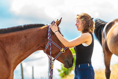 Young woman girl taking care of horse. Young woman girl taking care of brown horse. Female with animal outdoor royalty free stock image