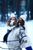 Young woman and girl walk with miniature horse in winter park. stock photo