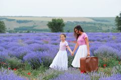 Young woman and girl are walking through the lavender flower field, beautiful summer landscape royalty free stock image