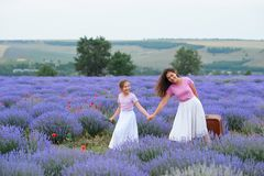 Young woman and girl are walking through the lavender flower field, beautiful summer landscape royalty free stock images