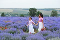 Young woman and girl are walking through the lavender flower field, beautiful summer landscape stock photography