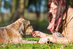 Young woman gives her dog a treat. While lying on the meadow Stock Photography