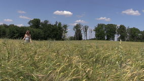 Young woman go through ripe rye field on blue sky background stock footage