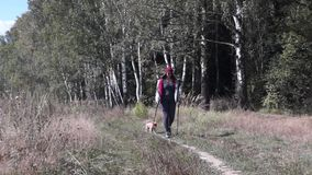 Young woman goes Nordic walking outdoors stock video