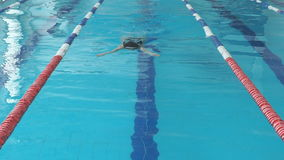 Young woman in goggles and cap swimming breaststroke stroke style in the blue water indoor race pool.  stock video