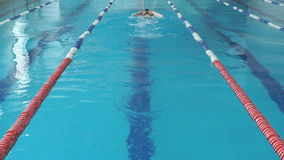 Young woman in goggles and cap swimming butterfly stroke style in the blue water indoor race pool.  stock video footage