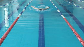 Young woman in goggles and cap swimming butterfly stroke style in the blue water indoor race pool.  stock video