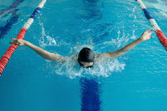 Young woman in goggles and cap swimming butterfly stroke style in the blue water indoor race pool.  Stock Photography