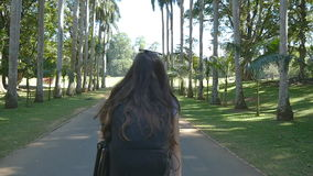 Young woman going along exotic parkland lane and viewing at palm tree. Summer vacation trip concept. Rear back view. Slow motion stock video