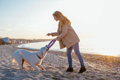 Young woman with golden retriever on the beach Royalty Free Stock Images