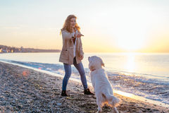 Young woman with  golden retriever on the beach Royalty Free Stock Photo