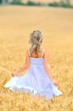 Young woman in golden wheat field Royalty Free Stock Photos