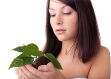 Young woman with green plant. Stock Photography