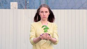 Young Woman with Green Young Plant In Hands stock footage