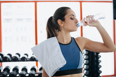 Young woman at the gym using fitness equipment. royalty free stock photography