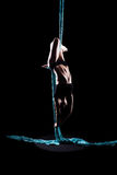Young woman gymnast with blue gymnastic aerial silks Royalty Free Stock Images