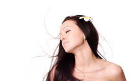 Young woman with hair flying Royalty Free Stock Images