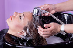 Young woman at hairdresser wash hair Royalty Free Stock Photo