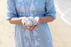 Young woman hand holding a seashell. At the beach Royalty Free Stock Images