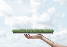 Young woman hand with tablet and fresh green grass on it. Bright sky background. Environment concept Royalty Free Stock Photography