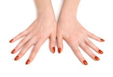 Young woman hand top view royalty free stock images