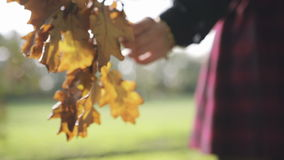 Young woman hand touching leaves in a field, outdoor. stock video