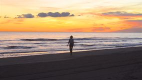 Young woman happily enjoys a sandy beach on a beautiful sunset. Pretty young woman walking happily along the beach at sunset. A video taken from a distance with stock footage