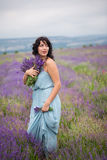 Young woman harvesting lavender flowers Stock Photography