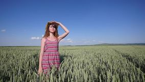 Young woman in a hat standing on a wheat field with blue sky on the background stock footage