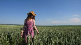 Young woman in a hat walking on a wheat field with blue sky on the background stock video footage