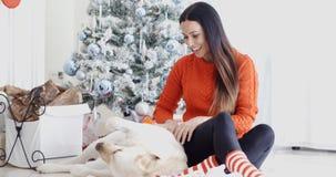Young woman having fun with her golden labrador Stock Photos