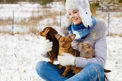 Woman playing with dogs during winter stock images