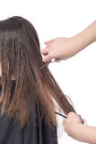 Young woman having a hair cut Stock Photos