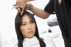 Young woman having haircut at beauty salon Stock Image