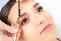 Young woman having professional eyebrow. Correction procedure in beauty salon stock photography