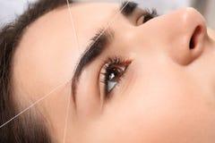 Young woman having professional eyebrow correction. Procedure, closeup royalty free stock photography